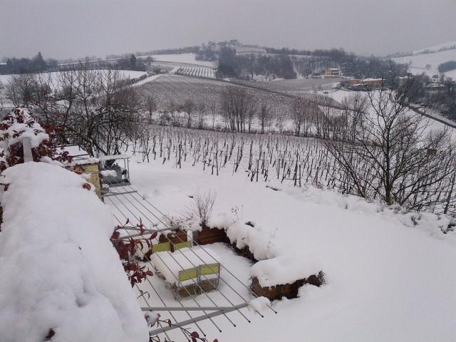 Bella Vista febbraio 2013 Nevica davvero da noi!