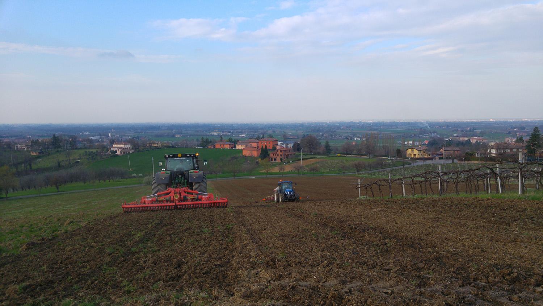 2016 03 21_171241 preparazione terreno e semina favino (9)